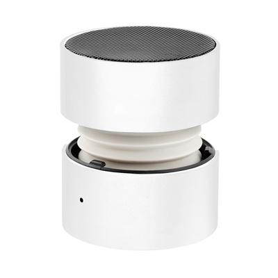 Speaker Promini zilver__1025558__0