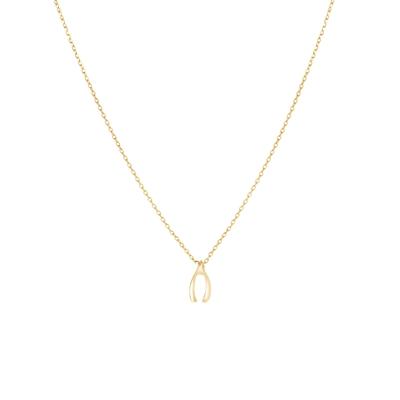 Goudkleurige byoux ketting wishbone__1053471__0