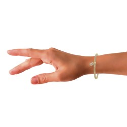Stalen armband mesh goldplated letter met kristal__1034136__1__thumb