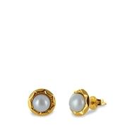Gelbgoldene Ohrringe mit Perle (1017625)