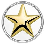 Stahl Chunk Stern vergoldet (1018396)
