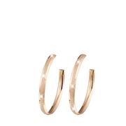 Ohrringe aus Stahl, rotvergoldet, diamantbeschichet (1020302)