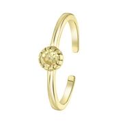 Ring, 925 Silber, vergoldet, Geburtsstein (1059518)