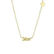 Zilveren goldplated ketting star (1061844)