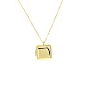 Zilveren goldplated ketting&hanger medaillon (1064077)