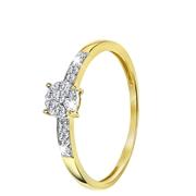 14 Karaat geelgouden ring entourage met diamant (1043156)